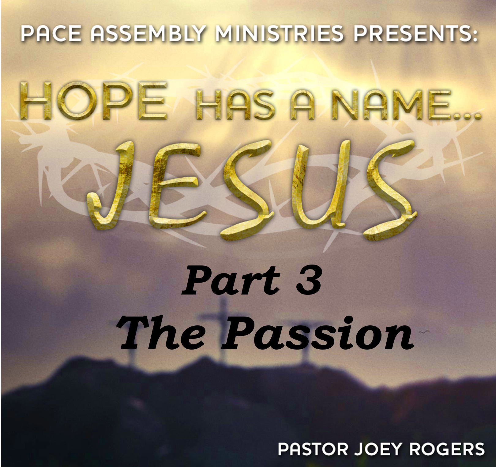 Hope Has a Name... Jesus Part 3 - The Passion