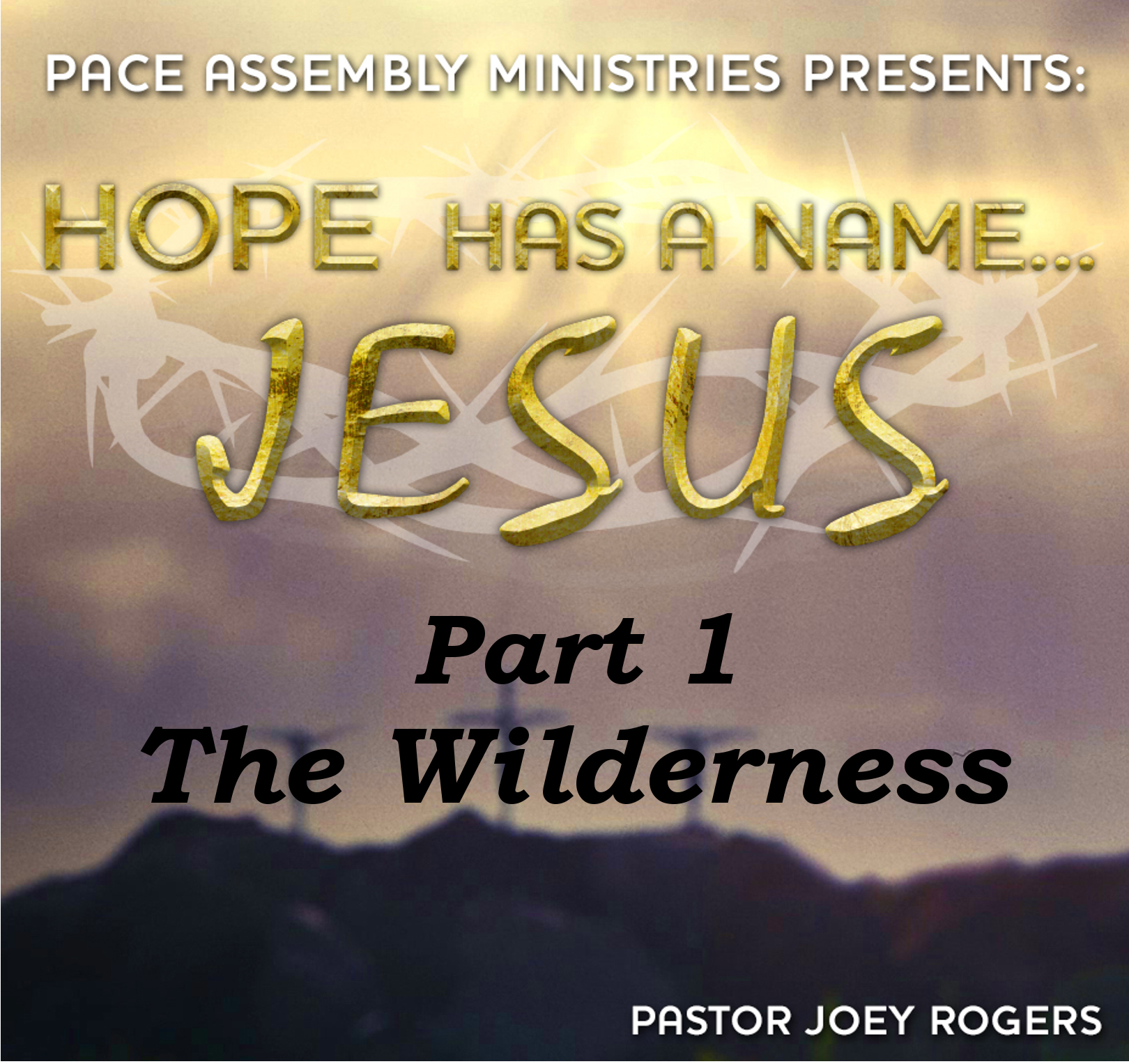 Hope Has a Name... Jesus Part 1 - The Wilderness